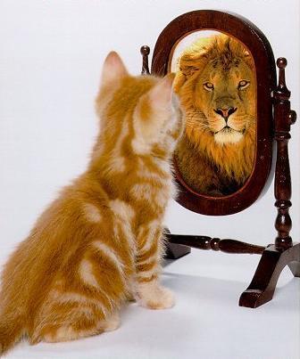 zelfvertrouwen en werk